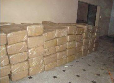 Asegura Policía Federal más de una tonelada de marihuana en Michoacán