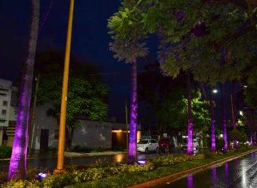 Con iluminación arquitectónica, resaltan esplendor de la capital oaxaqueña: Villacaña Jiménez