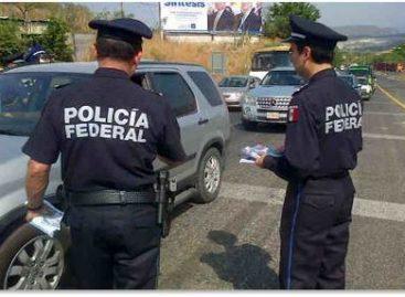 Decomisa Policía Federal en distintas acciones cristal, heroína y goma de opio en tres estados