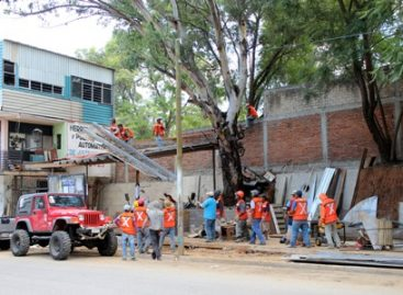 Recupera Municipio de Oaxaca de Juárez predio ocupado ilegalmente en Avenida las Etnias
