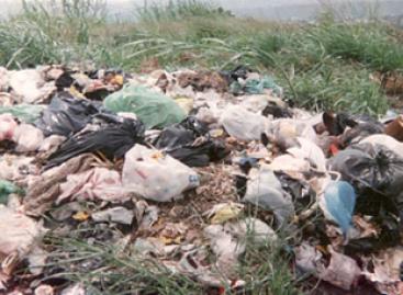 Genera México más de 42 mil toneladas de residuos tóxicos que afectan la salud humana