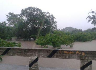 """Oaxaca a la deriva por las lluvias; Afectaciones en carreteras y viviendas ha provocado """"Trudy"""""""