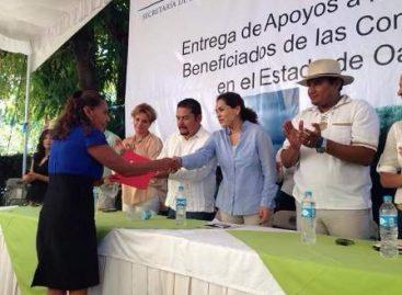 Aplican siete mdp para la reactivación económica de 37 empresas oaxaqueñas: Rodríguez Casasnovas