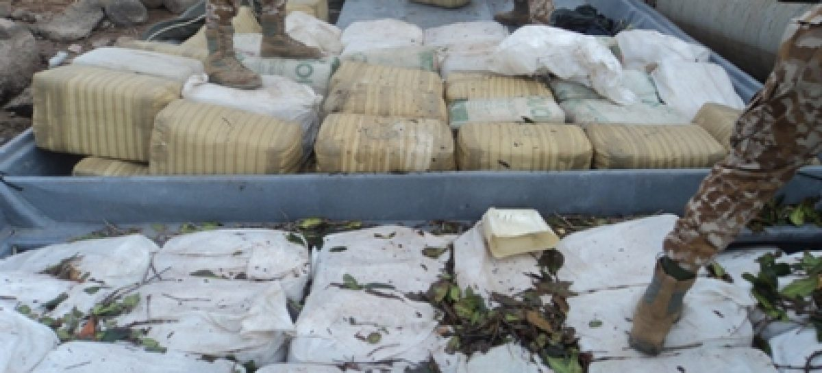 Decomisa la Armada de México más de cinco toneladas de marihuana en Tastiota, Sonora