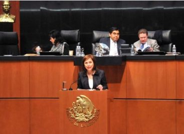 Llama senadora a revisar tipificación del delito de desaparición forzada en estados