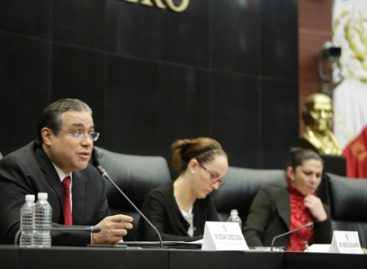 Niñas, niños y adolescentes son personas sujetas de derechos y no objetos de protección: CNDH