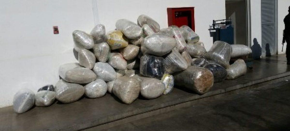 Aseguran más de media tonelada de marihuana en Sola de Vega, Oaxaca: SSPO