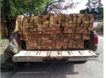 Aseguran camioneta que trasladaba madera de forma ilegal en Oaxaca