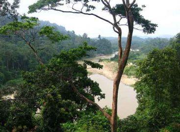 Los Chimalapas sin agua potable aporta 40 por ciento al río Grijalva, Usumacinta y Coatzacoalcos