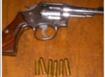 Aseguran madera y arma de fuego sin las licencias correspondientes, en Oaxaca