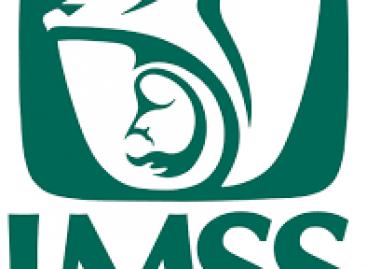Impartirá IMSS-Oaxaca curso-taller sobre temas de salud materna y reproductiva