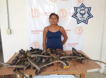 Detiene Policía Estatal a una mujer cuando transportaba 17 iguanas, en Oaxaca