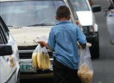 En el mundo, 120 millones de menores de edad se encuentran en situación de trabajo infantil