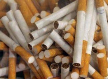 Humo del tabaco contiene toxinas nocivas para pulmones y bronquios: Especialistas del IMSS