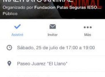 """Invitan a la caminata """"No más maltrato animal"""", en Oaxaca"""