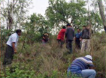 Realizan Segunda Campaña de Reforestación en el Cerro del Fortín, en Oaxaca