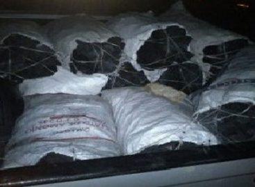 Detenido por transportar 90 costales de carbón vegetal sin permiso en Xoxocotlán, Oaxaca