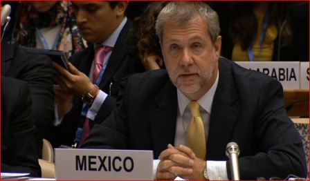 Representante permanente del Gobierno de México ante los Organismos Internacionales