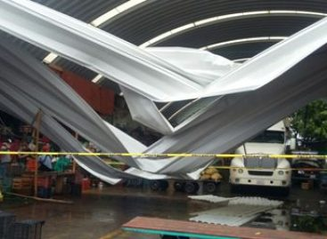 Fuertes rachas de viento tiran láminas de domo en bodegas del Mercado de Abastos de Oaxaca; Sin lesionados