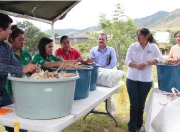 Fomenta Universidad Tecnológica de Oaxaca alternativas de alimentación sostenible