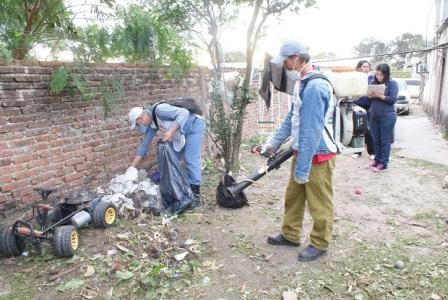 Combaten dengue y chikungunya