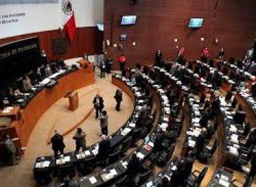 Aumenta robo de identidad en México, advierten senadores del PRI