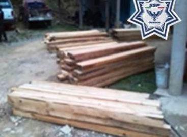 Detenido por transportar más de 100 piezas de madera de pino sin permiso, en la Costa de Oaxaca