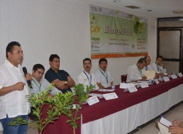 Produce Oaxaca 252 mil toneladas de cítricos: SAGARPA