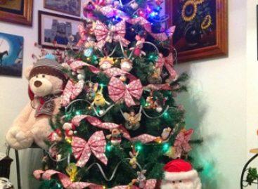 Exhorta IMSS a disfrutar las festividades navideñas y de fin de año con responsabilidad