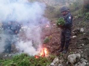 El hecho en inmediaciones de San Mateo Yucutindoó, agencia municipal de Villa Sola de Vega