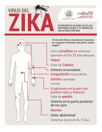Acéfala para enfrentar al Zika