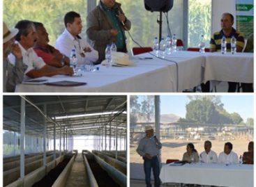 En el Trapiche, Oaxaca, producen lombrices para alimentar al campo y generar empleos