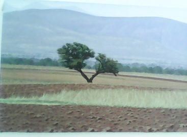 Exposición 'Paseos al Interior' pintura de Israel Nazario en Pinacoteca Municipal