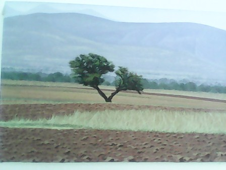 Obra del artista plástico Israel Nazario