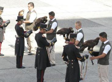 Fortalecen Sedena, Semarnat Y Profepa acciones para la conservación del águila real