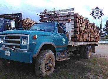 Aseguran tres camiones cargados de madera en operativo conjunto con la Profepa en Oaxaca