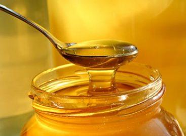 Caen 52% exportaciones de miel de enero a mayo, en comparación con el mismo lapso de 2015
