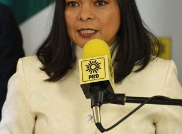 El PRD será definitorio para las elecciones de 2018 y no vamos a estar en la cola de nadie: Mojica Morga