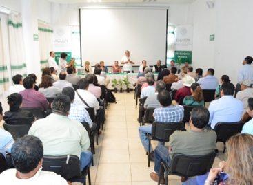 Inician trabajos para la conformación de un organismo específico para el café en Oaxaca