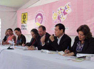 La vida de las mujeres no es prioridad para el gobierno de Eruviel Ávila: Castello Rebollar