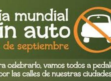 """Convocan legisladores a celebrar el """"Día Mundial sin Automóvil"""""""