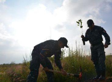 Reforesta Gendarmería especializada en misión ambiental el parque Tarango de la Ciudad de México