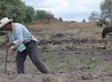Presentará Comisión de Reforma Agraria punto de acuerdo para evitar recorte presupuestal al campo