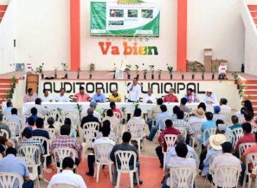 Otorgan 50 mdp más para fortalecer cafeticultura; suman 200 mdp para Oaxaca