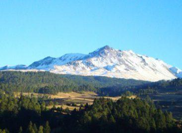Alertan senadoras sobre riesgos por aprovechamiento forestal en el Nevado de Toluca