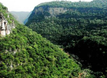 Se congratula CNDH por ampliación de la red nacional de Áreas Naturales Protegidas y de salvaguarda
