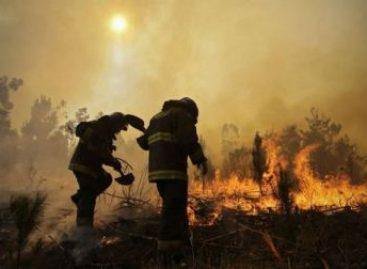 Viaja Misión Humanitaria Internacional en apoyo al Gobierno de Chile por incendios forestales