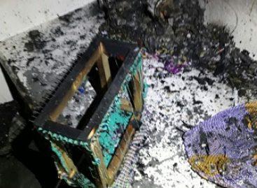 Sin incidentes que lamentar, sofocan incendio en Penitenciaría Central de Oaxaca: SSPO