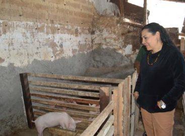 Supervisan proyectos del Fondo de Apoyo a Migrantes 2016 en Oaxaca