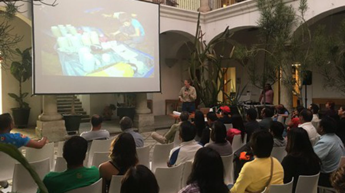 Atrae Oaxaca expediciones internacionales en el Sistema Cheve de la región de la Cañada